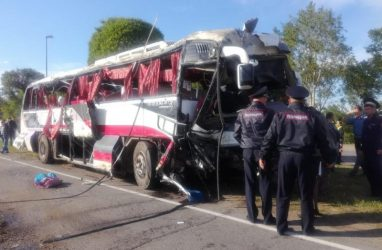 Нарушений в документах смертельного для китайских туристов автобусного рейса не нашли