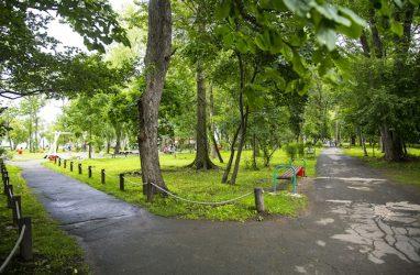 Уголовное дело завели на бывшего директора одного из самых популярных парков Владивостока