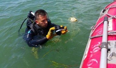 В Приморье спасатели ищут ребёнка, пропавшего на реке — МЧС