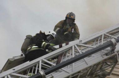 «Очень жалко, что в наше сложное время люди страдают от стихии»: во Владивостоке обсуждают крупный пожар в ТЦ «Максим»
