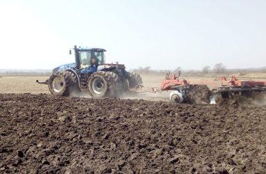 В Приморье строители занялись выращиванием сои
