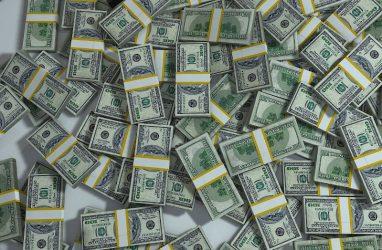 Резидент технопарка «Русский» привлёк более миллиона долларов США