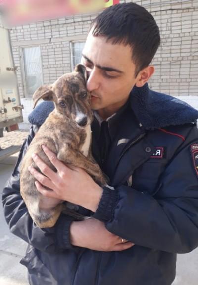 Полицейский и собака. Фото: пресс-служба отдела МВД России по городу Уссурийску