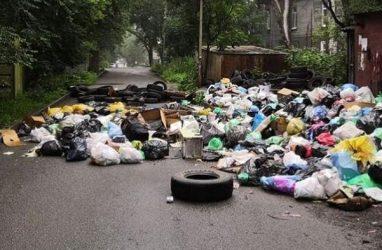 На информационно-расчётное обслуживание потребителей в рамках «мусорной реформы» в Приморье направили почти 520 млн рублей