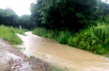 Из-за паводка дороги к трём сёлам и железнодорожной станции в Приморье стали непроходимыми