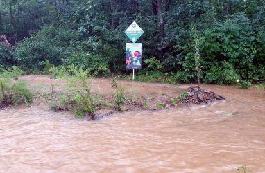 «Логово леопарда» в Приморье оказалось недоступно из-за наводнения