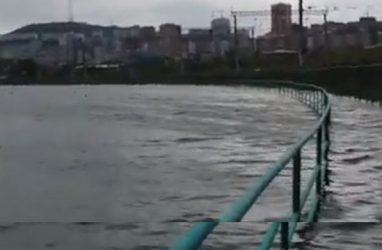Во Владивостоке вышло из берегов озеро Чан