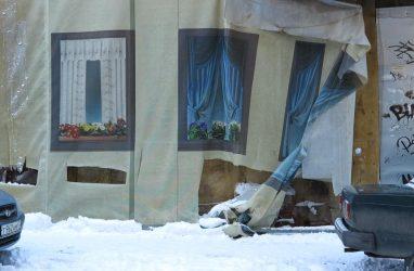 Во Владивостоке расскажут о том, что такое био-арт