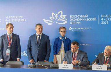В производство метанола и аммиака в Приморье вложат более 200 млрд рублей
