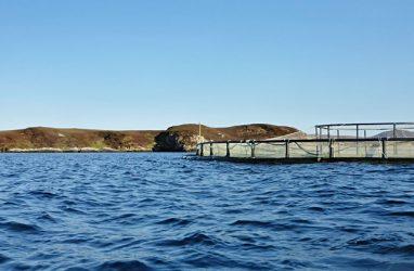 На одном из озёр Приморья займутся аквакультурой