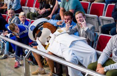 Хоккеисты «Адмирала» в блестящем стиле победили «Северсталь»