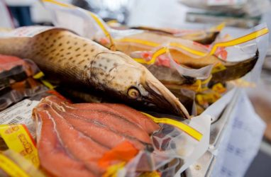 В строительство рыбного рынка во Владивостоке уже вложили 23 млн рублей