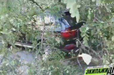 Во Владивостоке на дорогой BMW упало дерево