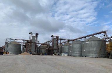 Опасные токсины нашли в партии зерна