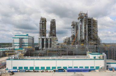 Новый образовательный курс «Химическая инженерия» открыли в ДВФУ