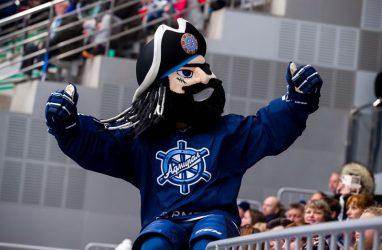 В Интернете появился сайт-двойник хоккейного клуба «Адмирал»