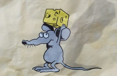 Мышь на сыре появится на центральной площади Владивостока в преддверии Нового года