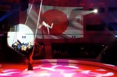 Следственный комитет начал проверку по факту падения гимнастки во Владивостокском цирке