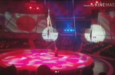 Воздушная гимнастка разбилась во время представления во Владивостоке