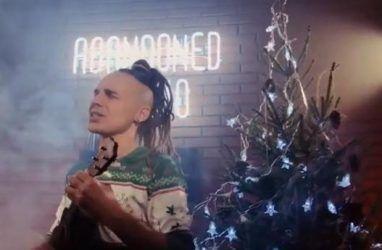 «Синтетической ёлкой чудес не спасти»: группа «Марлины» выпустила клип о живых новогодних ёлках