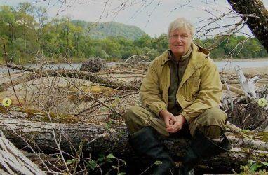 Австрийский режиссёр снимет в Приморье фильм об амурских тиграх