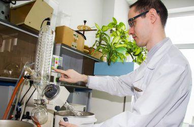 Гранты на научные исследования на сумму 30 млн рублей выиграли в ДВФУ