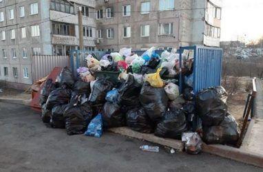 Жители Владивостока пожаловались на огромную кучу мусора возле дома