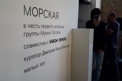 """Во Владивостоке в рамках фестиваля V-ROX EXPO открылась выставка """"Морская"""""""