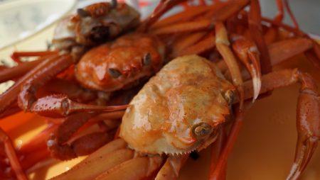 crab-1033446_960_720