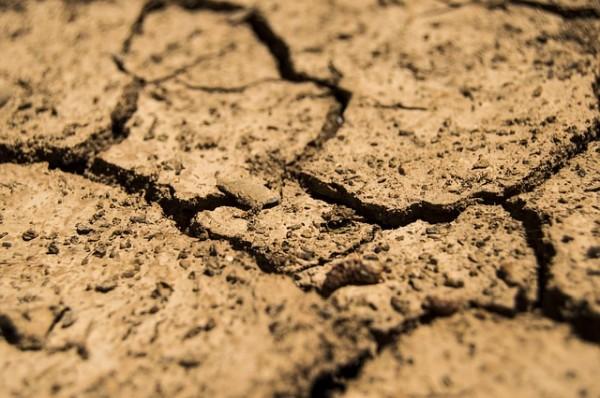 земля, засуха