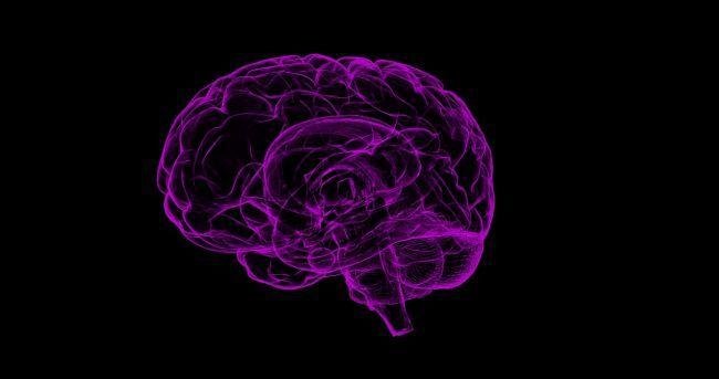 Мозг человека, психолог, психиатрия