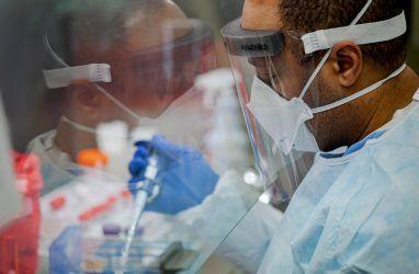 В Приморье ввели режим повышенной готовности в связи с коронавирусом