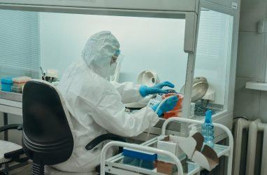 Правительство Приморья прокомментировало недавние фейки о коронавирусе