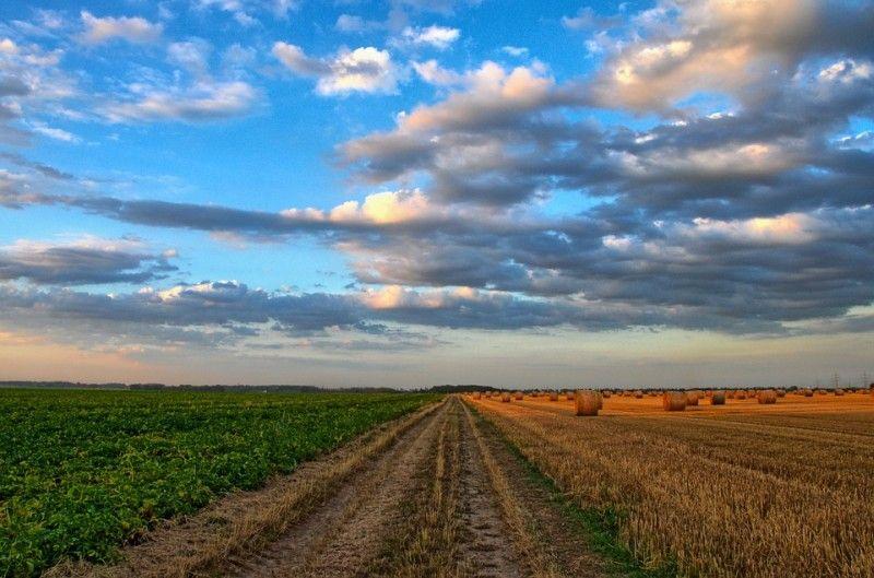 Поле, земля, небо, деревня. Фото - pixabay
