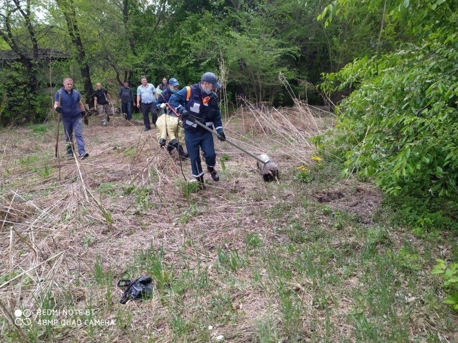 Спасатели поймали барсука в Благовещенске. Фото - пресс-служба МЧС РФ