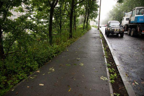 Дорога, дождь, влажность