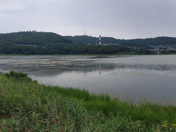 Озеро Солёное в Находке. Фото - пресс-служба ОНФ