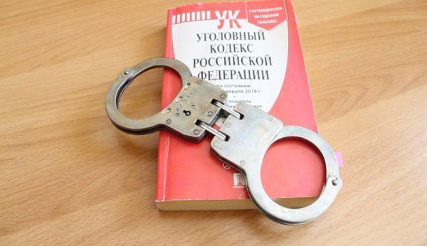 Уголовный кодекс, наручники, полиция. Фото - пресс-служба ОМВД России по городу Артему